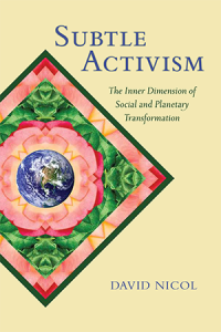 subtle-activism-book-cover